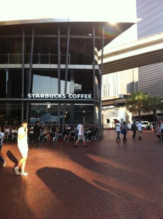 Starbucks Circular Quay