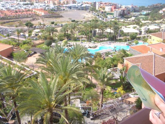 La piscina picture of melia jardines del teide costa for Jardines del teide