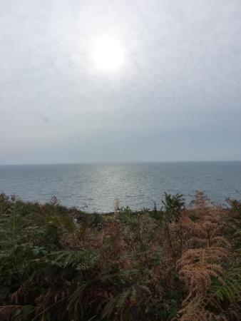 Morning, early October, from the coastal trail near Cove Cottage