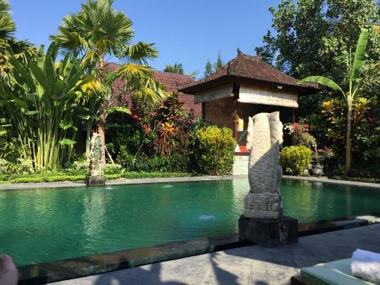 Vordere Pool Picture Of Bali Dream Resort Ubud Tripadvisor