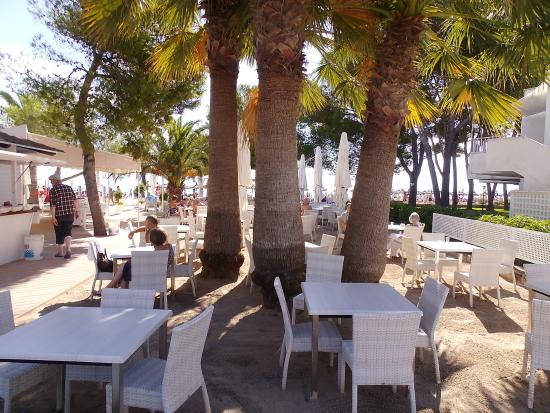 Beach Bar - Picture of Hotel Roc Boccaccio, Port d'Alcudia - TripAdvisor