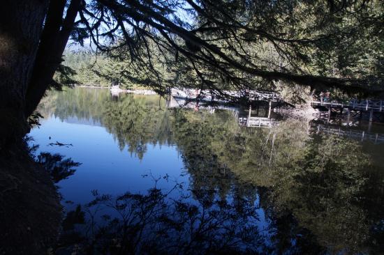 نورث فانكوفر, كندا: Rice Lake