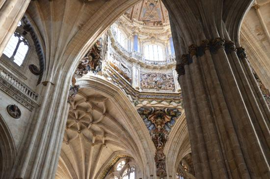 plafond cath drale salamanque photo de old cathedral catedral vieja salamanque tripadvisor. Black Bedroom Furniture Sets. Home Design Ideas
