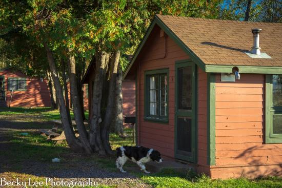 Gardenwood Resort and Motel: Cabin at Gardenwood Resort