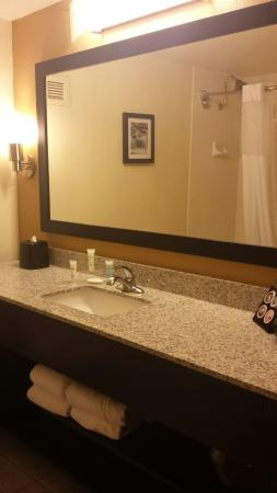 BEST WESTERN PLUS Denver Tech Center Hotel: Spotless and well  appointed bathroom