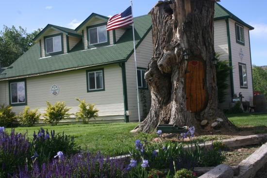 Palisade, CO: Gnome house