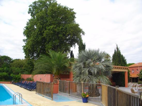 Camping Le Haras : Près de la piscine