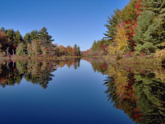 Berwick, ME: Glass-like pond