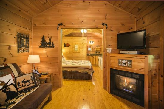 Hot Springs Log Cabins: One Room Log Cabin With Fireplace