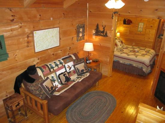Hot Springs Log Cabins: One Room Log Cabin With Pocket Doors.