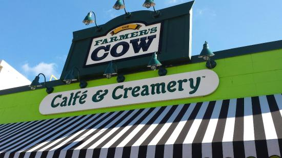 Mansfield Center, CT: Farmer's Cow Calfe & Creamery