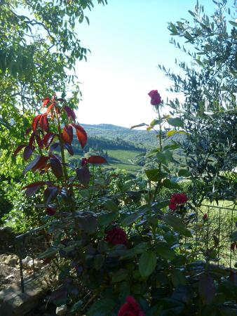 Podere Palazzolo: A garden with a view.