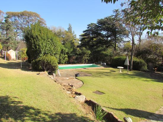 Backpackers Ritz: Outdoor (gated in) garden area and pool