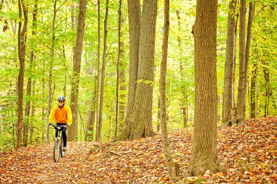 Fall cycling in Barrie