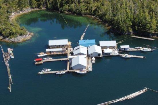 cod son picture of rodgers fishing lodge tahsis