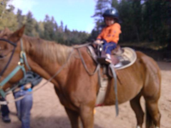 Old Stage Riding Stables: Grandson riding horse.