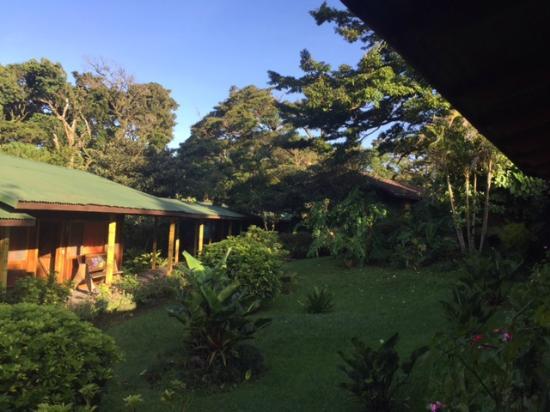 Hostel Villa Verde : areas verdes y jardin