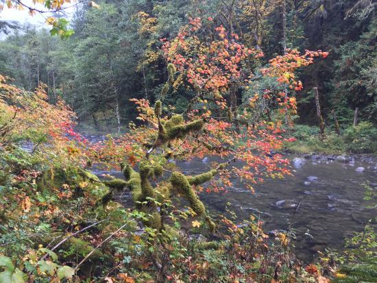 Salmon River Trail: photo7.jpg