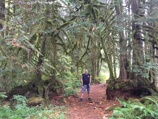 Salmon River Trail: photo8.jpg