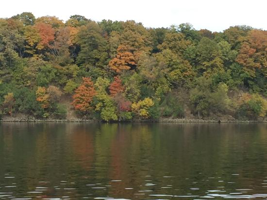 Excelsior, MN: Fall colors on Lake Minnetonka taken during the Vruise.
