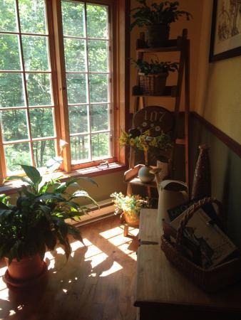 La Chaumiere de l' Anse: plant corner beside the living room