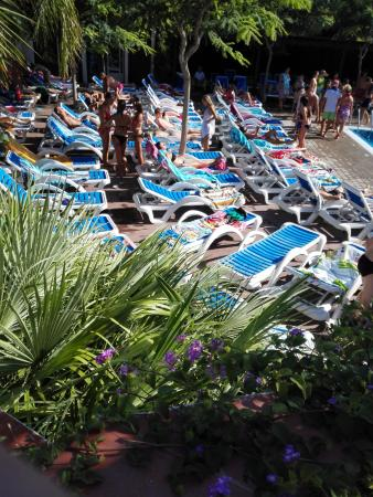 Piscine - Photo De La Siesta Salou Resort & Camping, Salou - Tripadvisor