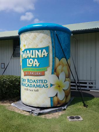 Keaau, HI: Mauna Loa