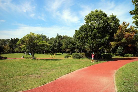 Imazu Sports Park