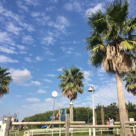 Urayasu Comprehensive Park: 総合公園