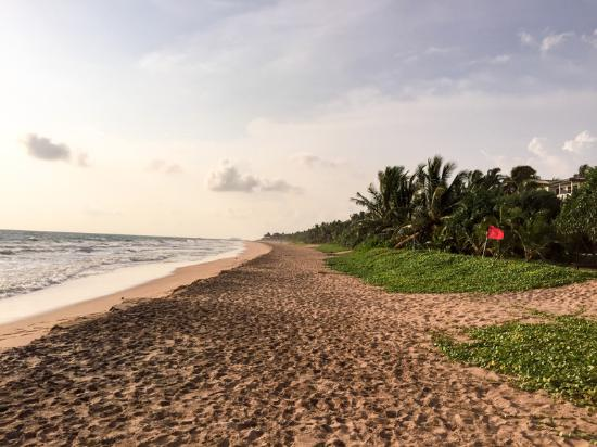Temple Tree Resort & Spa: Beach in front of the hotel