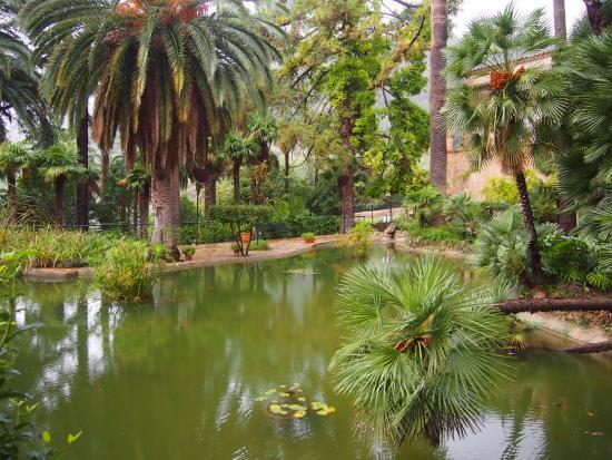 Плантации - Picture of Jardins de Alfabia, Bunyola - TripAdvisor