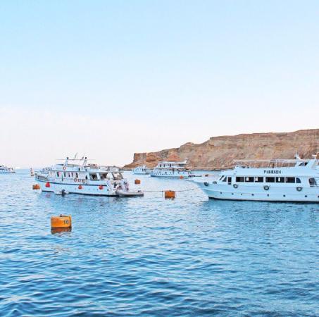 Cleopatra Tsokkos Hotel : Красивое море