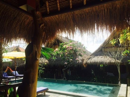 The Calmtree Bungalows: Lovely atmosphere at truly Calm Tree Bungalows