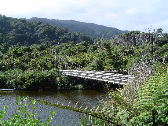 Kahurangi Guided Walks