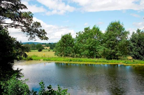 Sellack, UK: Lake