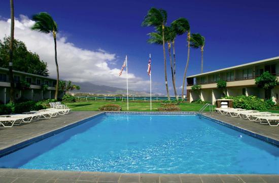 Maui Seaside Hotel: Pool view