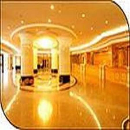 Sanya Treasure Island Sea View Hotel : Hall