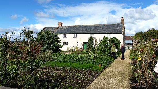 Musbury, UK: River Cottage 1
