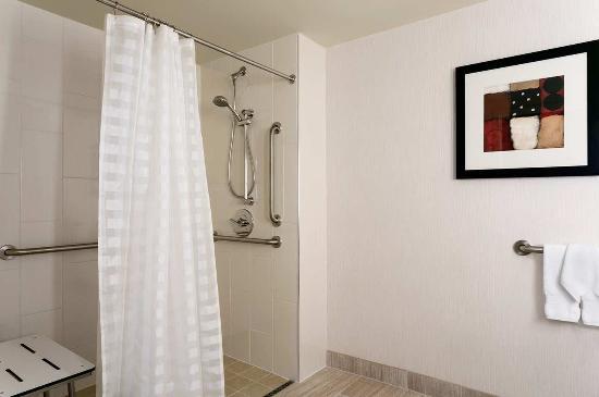 Embassy Suites North Shore / Deerfield: Accessible Bathroom