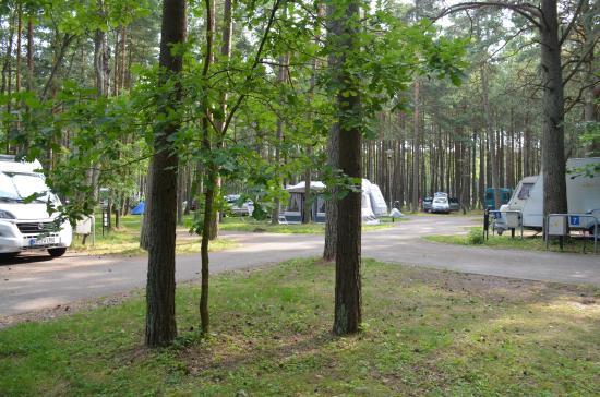 Camping Pajurio Kempingas