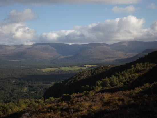 Craigellachie National Nature Reserve: Cairngorms, from the Viewpoint