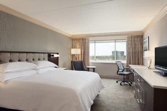 Hilton Philadelphia City Avenue: New King Guest Room Photo