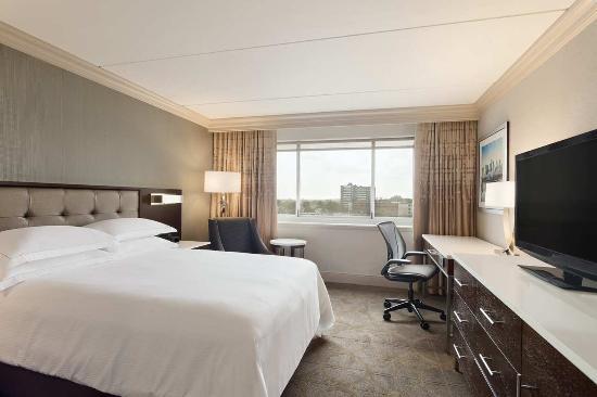 Hilton Philadelphia City Avenue: New Standard Queen Photo