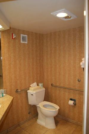 Hampton Inn Idaho Falls At the Mall: Accessible Queen Bathroom