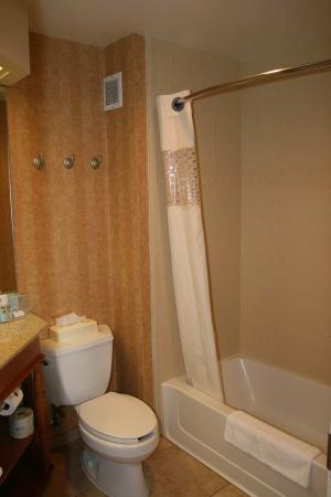 Hampton Inn Idaho Falls At the Mall: Bathroom
