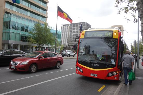 99a 98a bus stop on north terrace picture of adelaide for 108 north terrace adelaide sa 5000