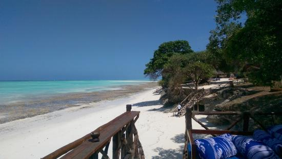 View From Ras Nungwi Beach Bar Picture Of