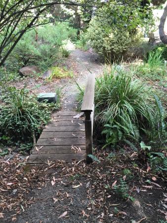 Western Hills Garden: photo4.jpg