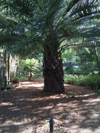 Western Hills Garden: photo5.jpg