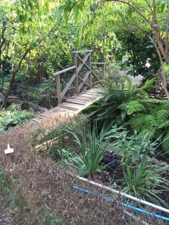 Western Hills Garden: photo7.jpg